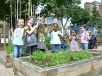 Edible Playground Trees For Cities (PRNewsFoto/Timberland)