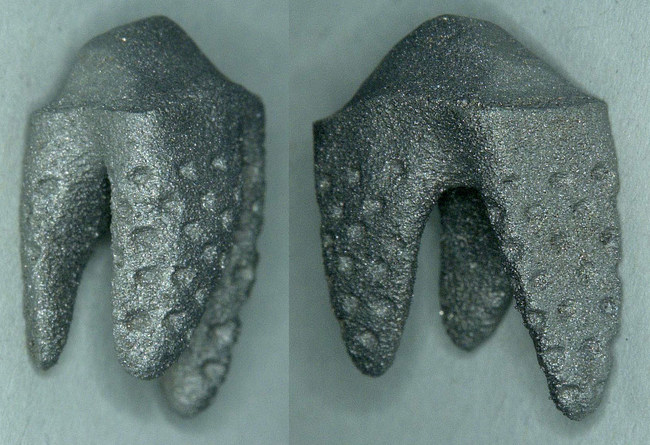 3D Printed REPLICATE Tooth, in development