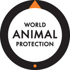 World Animal Protection applauds commitment by Burger King and Tim Hortons to improve chicken welfare by 2024