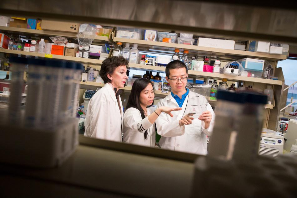 (From left to right) Martine Roussel, Ph.D., BaoHan Vo, Ph.D., Chunliang Li, Ph.D.