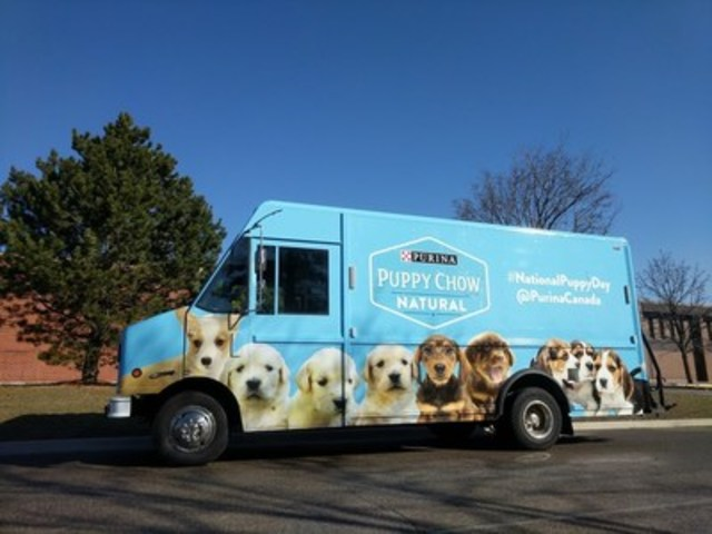 Pictured: The Purina® Puppy Mobile is taking the streets of Toronto in celebration of National Puppy Day on Thursday, March 23; five lucky Torontonians will receive a Random Act of Puppy, including a surprise visit from some adorable Portuguese Water Dog puppies! (CNW Group/Purina Canada)
