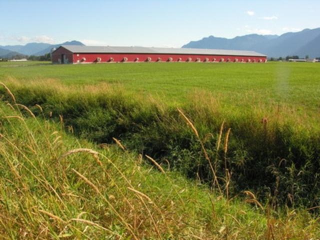 British Columbia family chicken farm (CNW Group/Chicken Farmers of Canada)