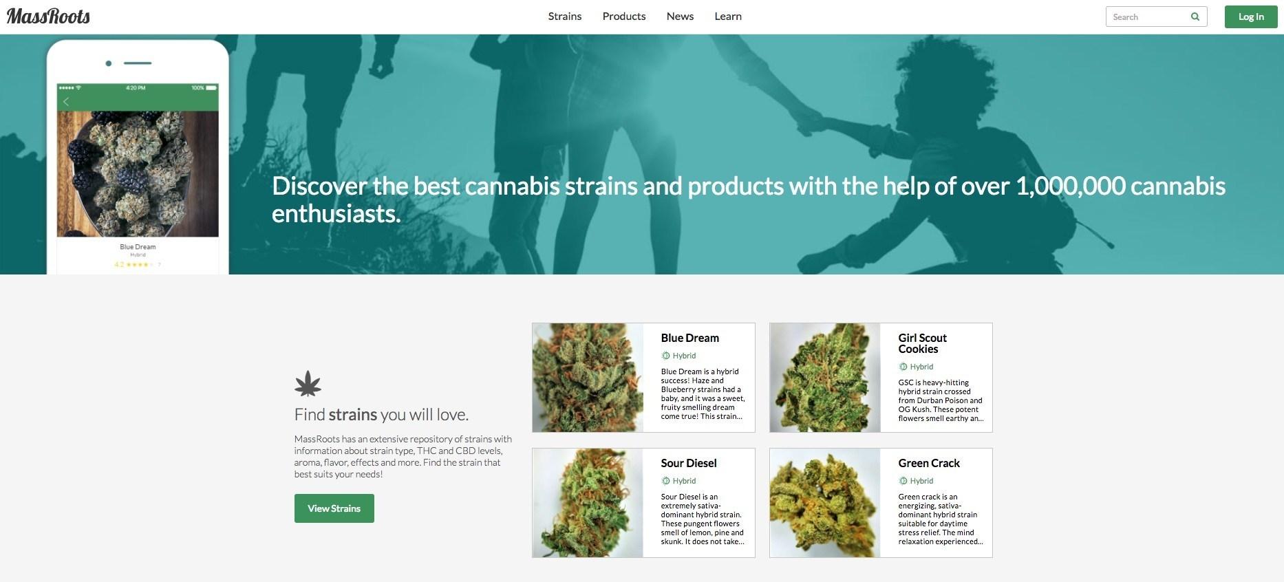 New MassRoots Website Interface