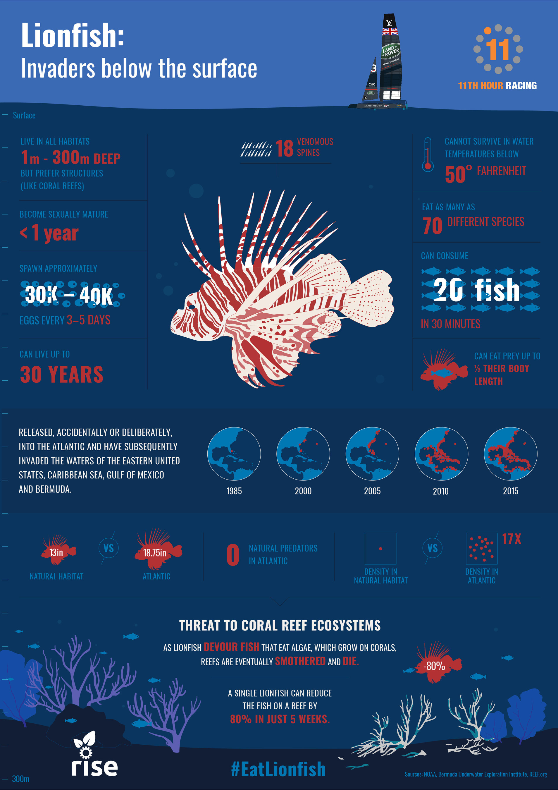 RISE: Robots In Service of the Environment Lionfish Facts and Infographic