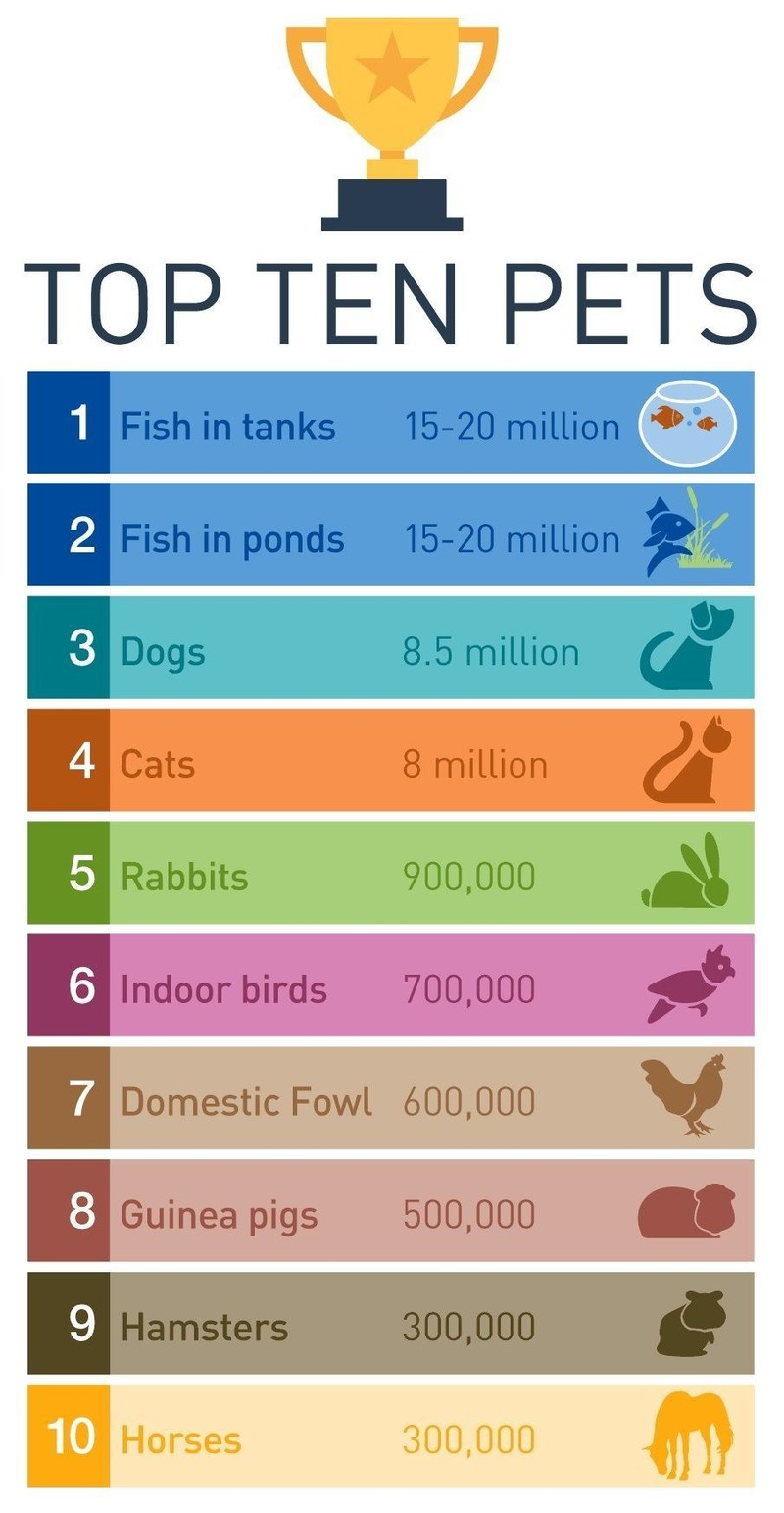 PFMA's Infographic of Top Ten Pets 2017 (PRNewsFoto/PFMA)