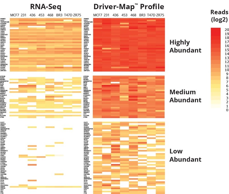 The Driver-Map(TM) assay provides up to 100x greater sensitivity than RNA-Seq allowing for a higher resolution view of the low-and medium-abundant genes in the sample.