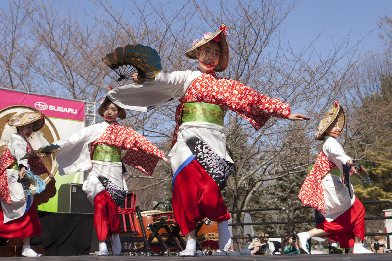 The Subaru Cherry Blossom Festival, April 1 - 9, 2017 in Philadelphia, celebrates both traditional and contemporary Japan with a variety of events, including demonstrations of martial arts, Ikebana flower arranging, as well as live musical and dance performances. Visit https://subarucherryblossom.org/ for more information.