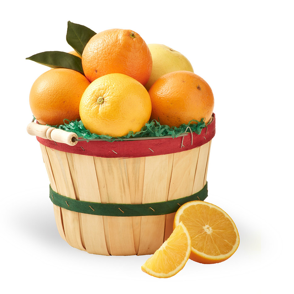 Florida Citrus Gift Fruit Mini Peck Basket