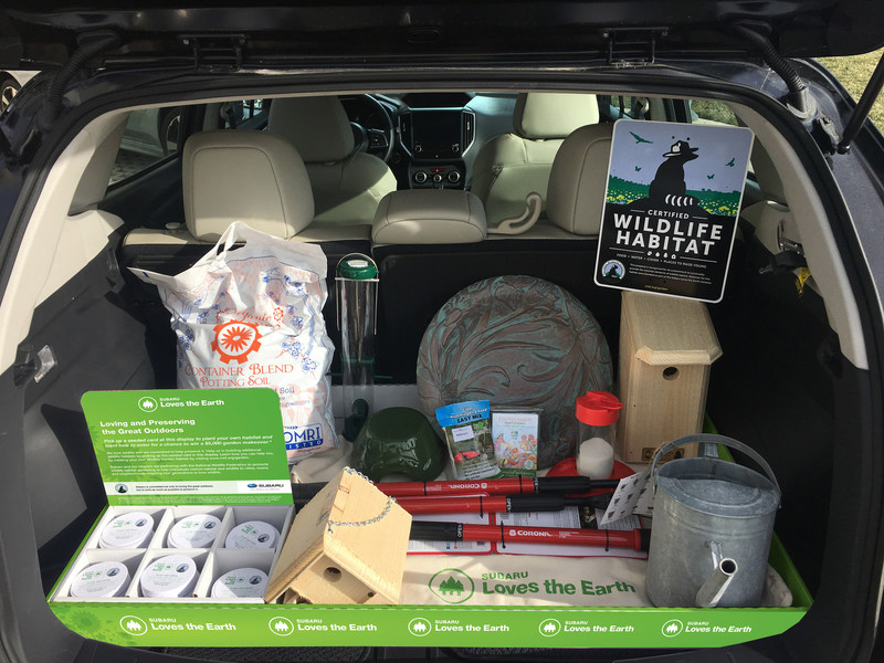 Throughout April, Subaru and the National Wildlife Federation team up to help combat the decline of wildlife habitats. More than 400 Subaru retailers will donate garden supplies and native plants for local schools to create Certified Wildlife Habitats.