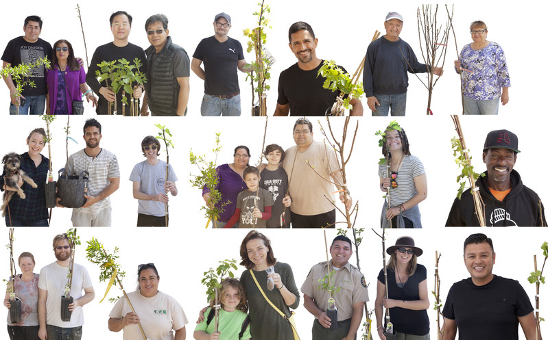 Endless Orchard Fruit Tree Adoption Portraits at Los Angeles State Historic Park - photo by Fallen Fruit