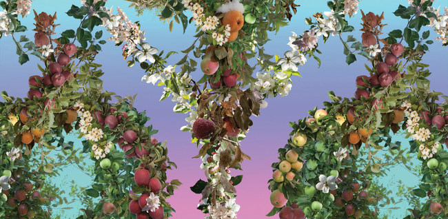 Paradise Endless Orchard Wallpaper by Fallen Fruit, David burns and Austin Young