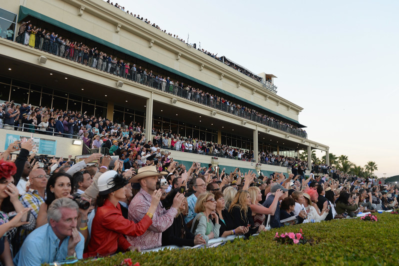 The World's Richest Thoroughbred Horse Race Comes Back To Miami
