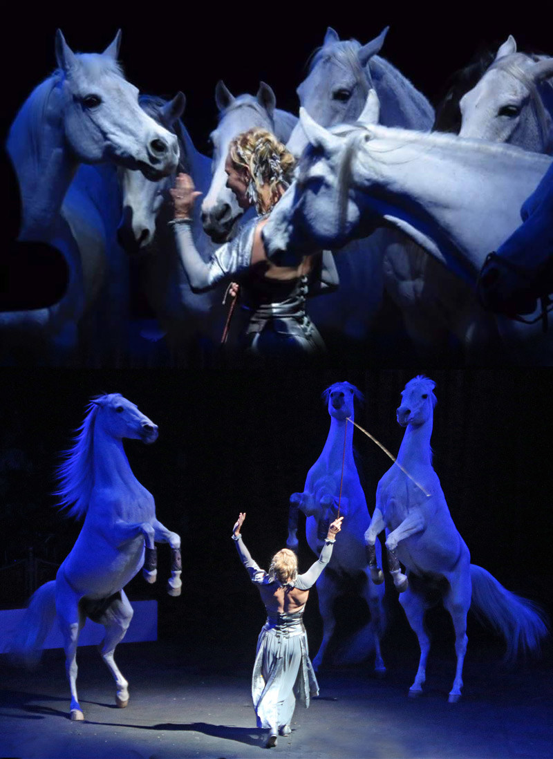 Recently Acclaimed CAVALIA Star Sylvia Zerbini and her Amazing Grand Liberte Horses - Live at Fiesta Charity 'MANE' EVENT on April 30th in Burbank, benefiting USC Norris Comprehensive Cancer Center