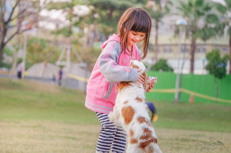 Keep yourself, your family and your pets safe by learning a few simple tips to prevent dog bites.