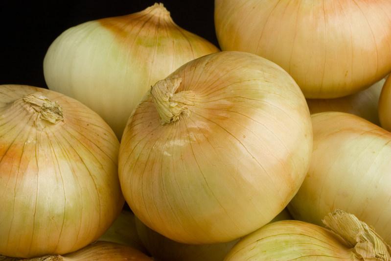 Vidalia® onion growers launched the 2017 season today, marking the 25th anniversary of the Vidalia onion trademark.