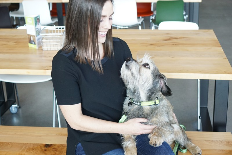 Millennials are particularly receptive to pet-friendly workplaces – an overwhelming majority believe they positively impact employees and company culture. (Photo Alison Pate/Banfield Pet Hospital)
