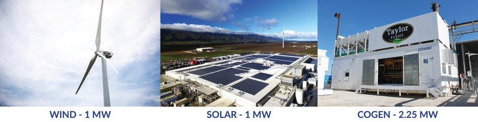 Taylor Farms Gonzales Facility Renewable and Alternative Energy System