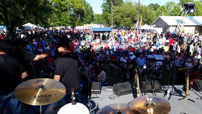 The Dominos Band performing to thousands at the Strawberry Festival