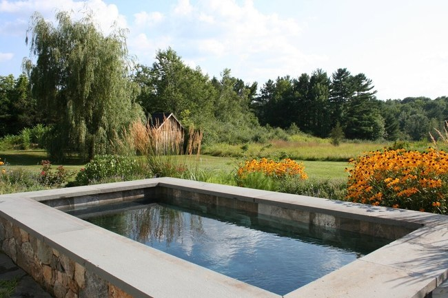 Soake Pool in large back yard