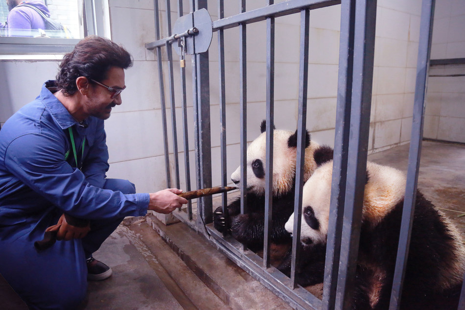 """India's National treasure"" Aamir Khan meeting with ""China's National treasure"" pandas"