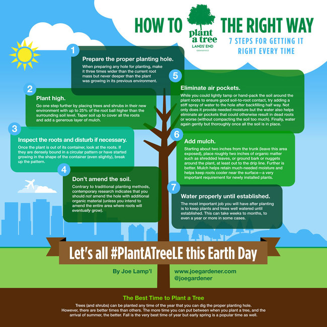 Let's all plant a tree this Earth Day!  Join Lands' End and Joe Lamp'l to learn how to plant a tree the right way in 7 steps.  #PlantATreeLE