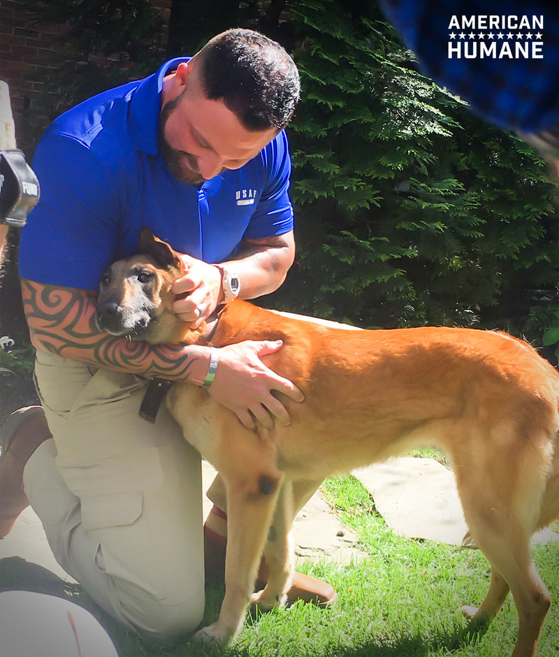 Retired military dog Emra was brought home to the United States from Korea, where she had been serving, and delivered into the arms of her former handler in an emotional reunion engineered by American Humane with the support of Crown Media Family Networks and American Humane donors across the country.