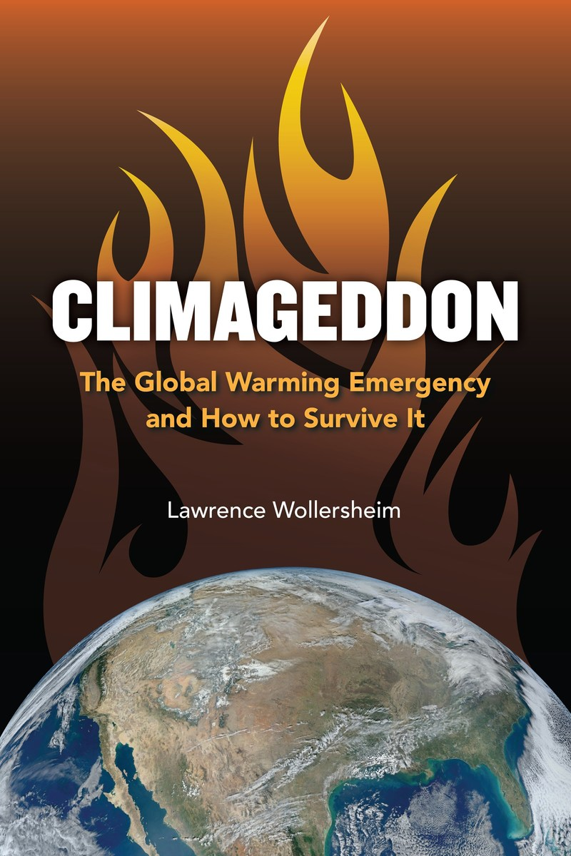 Front cover of book