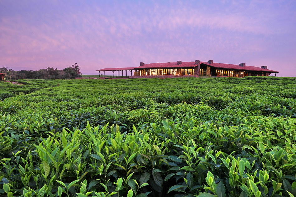 One&Only introduces two One&Only Nature Resorts in Rwanda #AuthenticallyWild
