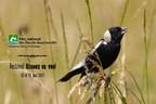 Festival Oiseaux en vue! 20 et 21 mai 2017 (Groupe CNW/Société des établissements de plein air du Québec)