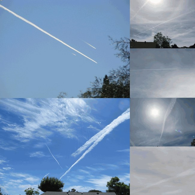 Upper Left: Three jets in the same physical environment, two showing contrails which quickly disappear by evaporation, one showing a lengthy particulate trail across the sky instead of a quickly evaporating contrail. Lower Left: Two jets spraying trails in the same physical environment, but one stopped spraying. This is not contrail behavior. Right Top to Bottom: Photos taken on days devoid of natural clouds showing jet-laid particulate haze in the San Diego, California sky.