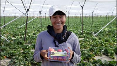 Andrew & Williamson Farmworker With GoodFarms Organic Strawberries
