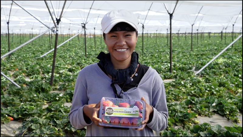 Andrew & Williamson Farmworker With GoodFarms Organic Strawberries