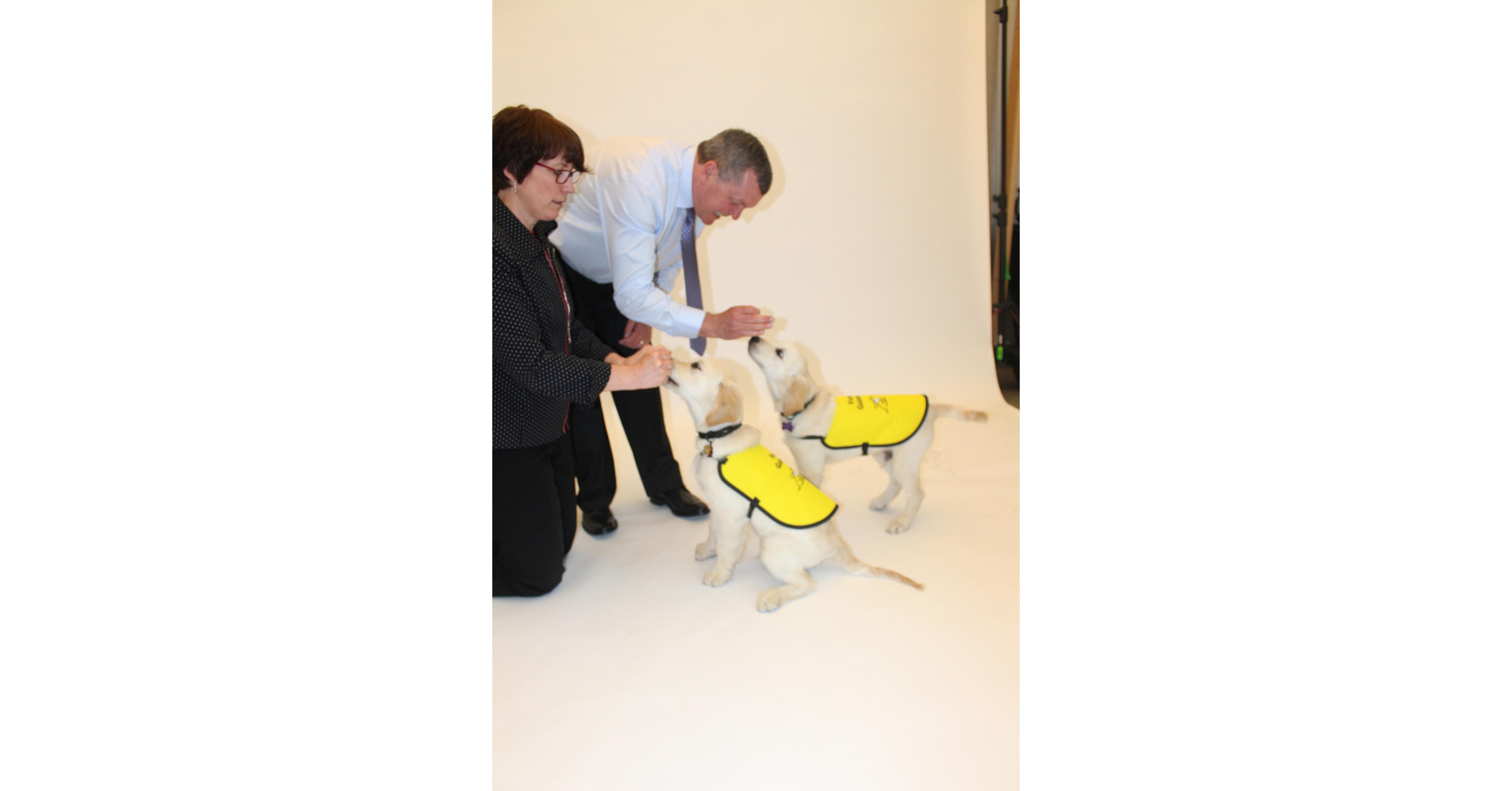 Cnib Guide Dog Training Program
