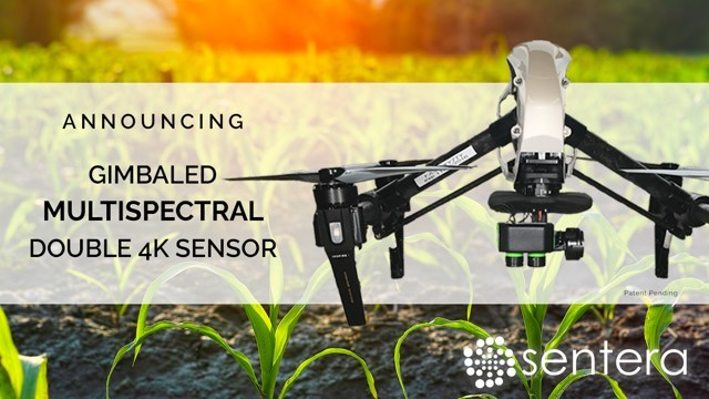 The Sentera Multispectral Double 4K Sensor offers five-precise spectral bands: blue, green, red, red edge and NIR, capturing vegetation indices including NDVI and NDRE.