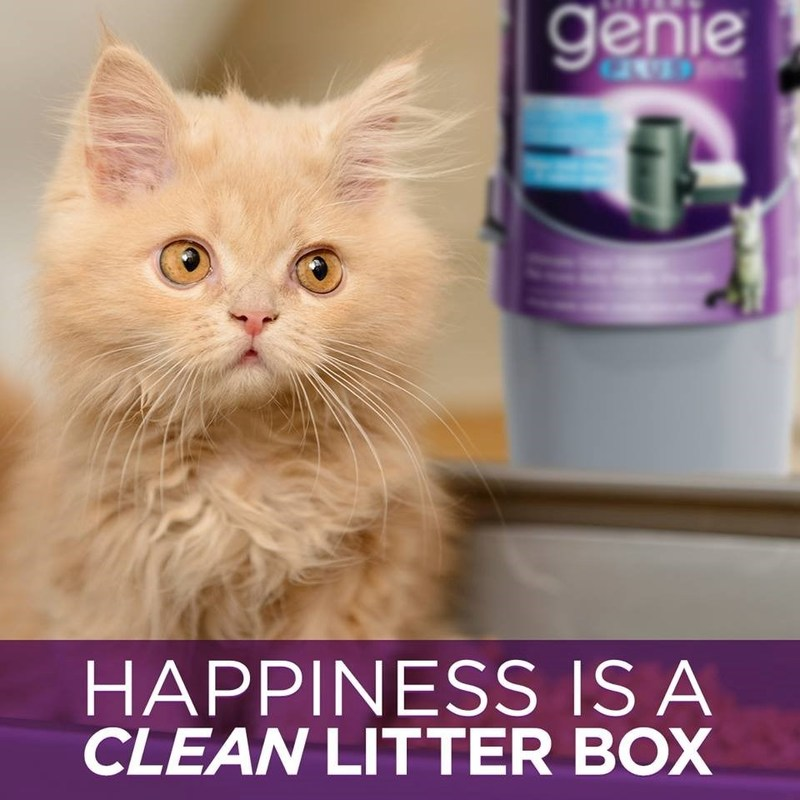 Litter Genie® Launches #StopCatLitterSmell Campaign, a Mission to Banish Cat Litter Odors