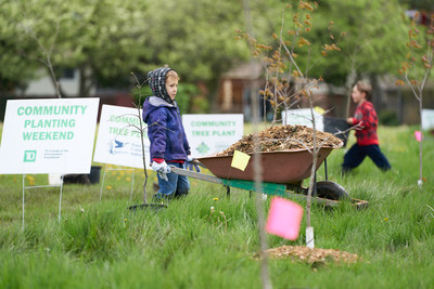 In Windsor, volunteers planted more than 80 trees that will be counted towards Ontario's Green Leaf ...