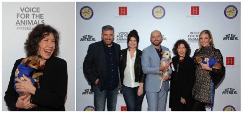 (L-R: Lily Tomlin walks red carpet with puppy needing a home from the West Los Angeles Animal Shelter; Panelists Craig Ferguson, Casey Wilson, Paul Scheer, Lily Tomlin, and June Diane Raphael.) Photos courtesy of Matthew Imaging