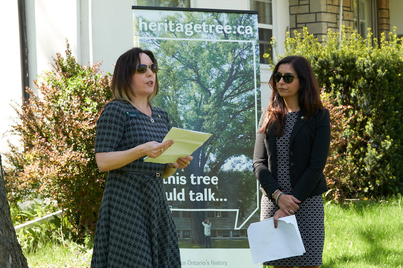 Tracey Sansom and Mandy Furtado of TD Bank Group at today's ceremony to recognize Windsor's majestic Jesuit Pear as a Forest Ontario  Heritage Tree. (CNW Group/Forests Ontario)