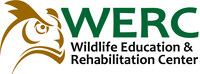 W.E.R.C., the Wildlife Education and Rehabilitation Center, provides the community with rehabilitation services for orphaned, injured and sick native wildlife. Through educational programs, W.E.R.C. encourages a peaceful coexistence between civilization and native wildlife.