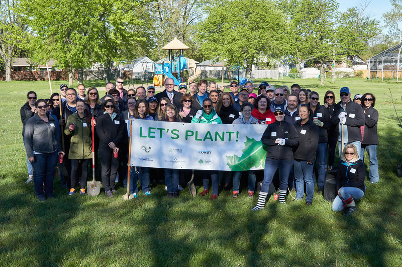 Today at Windsor's Thompson Park, Hiram Walker & Sons Limited joined Forests Ontario, Corby Spirit and Wine Ltd., and the City of Windsor to plant 200 trees. Trees planted today will be counted towards Ontario's Green Leaf Challenge. (CNW Group/Forests Ontario)
