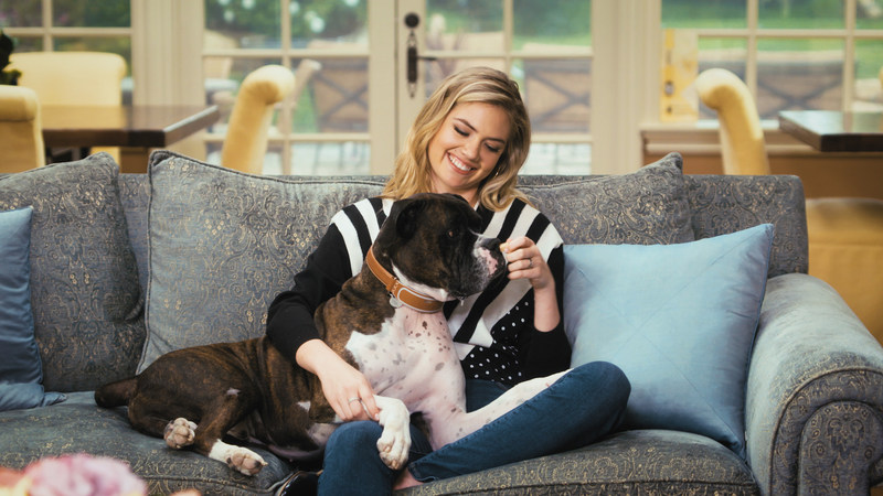 Kate Upton and Harley for Link AKC