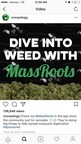 MassRoots Launches Celebrity Influencer Campaign to Accelerate User Growth