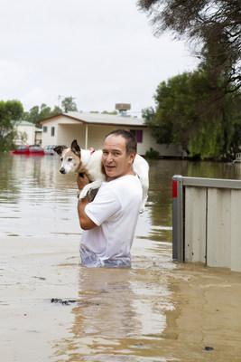 Animaux sinistrés des inondations, l'Association des médecins vétérinaires du Québec (AMVQ) offre ses conseils. (Groupe CNW/Association des médecins vétérinaires du Québec)