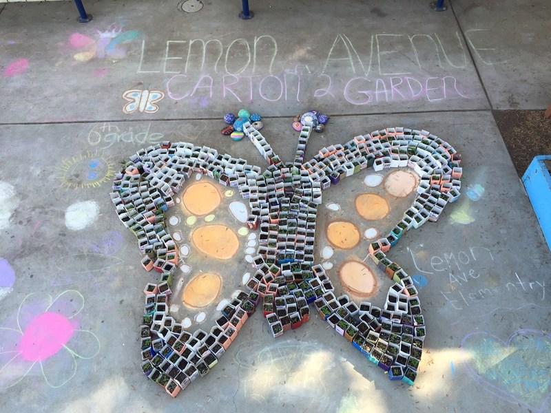 "Grand Prize Winner – Lemon Avenue Elementary School – La Mesa, California – ""Saving the Monarchs"" garden"