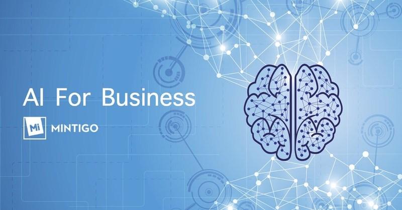 Mintigo - AI For Business