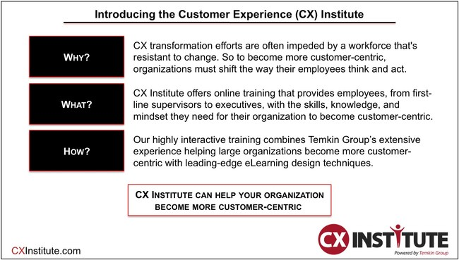 CX Institute's online training helps organizations to become more customer-centric (CXInstitute.com)