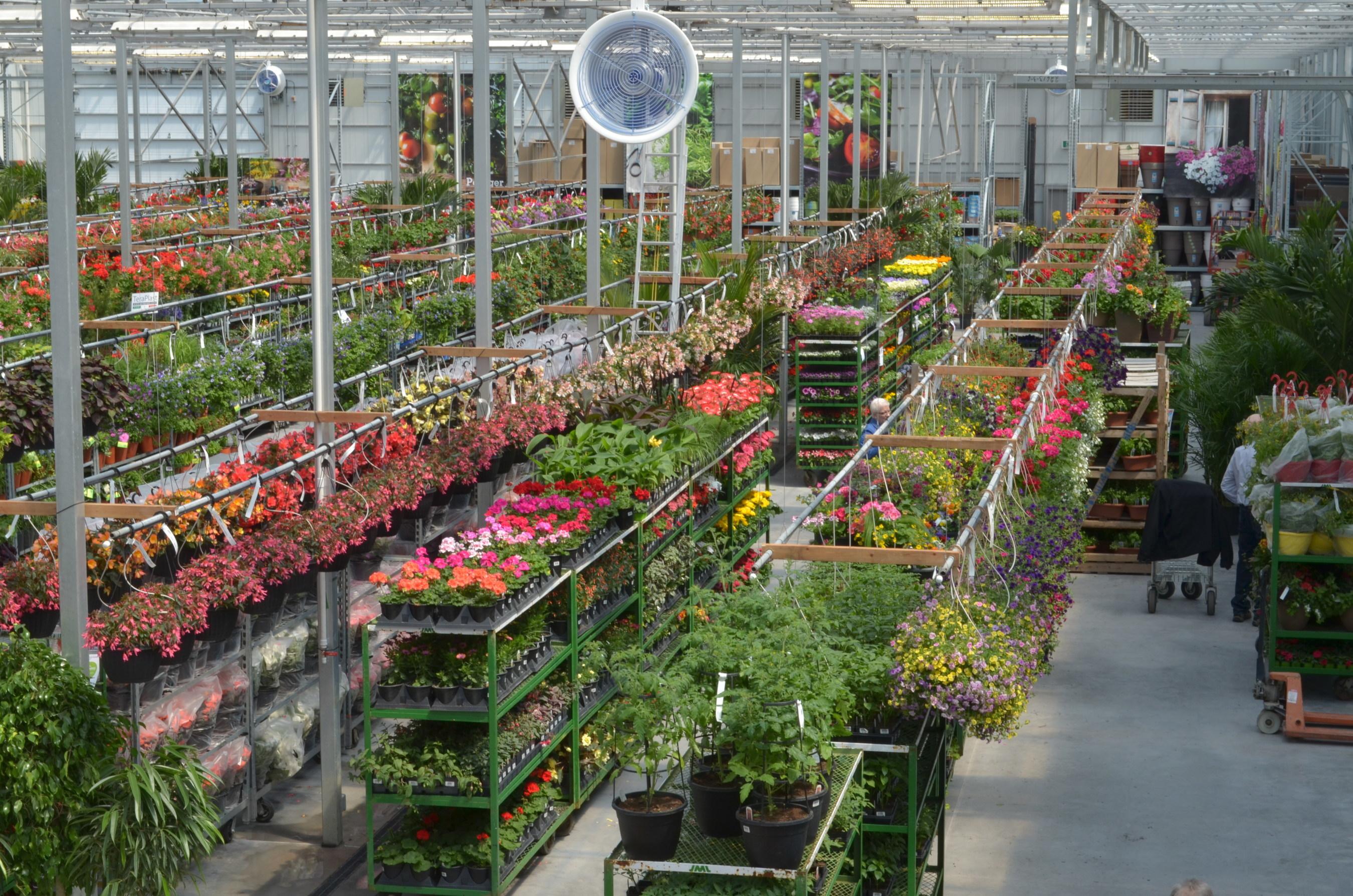 Le nouveau jardin hamel enfin ouvert au grand public for Jardin hamel papillon 2016