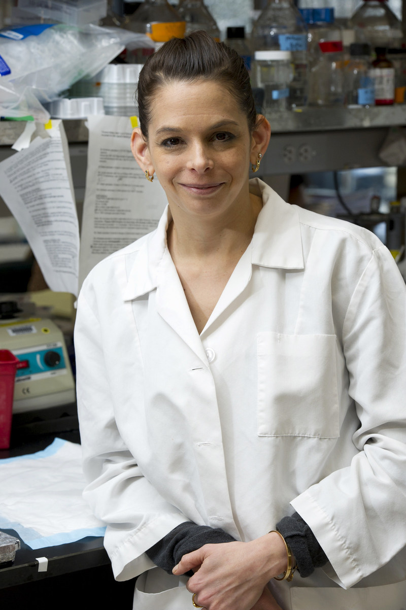 Lior Brimberg, PhD, assistant professor at Northwell Health's Feinstein Institute for Medical Research, received the Young Investigator Award from the International Society of Autism Research (INSAR) for her innovative work in helping to identify the causes of Autism.