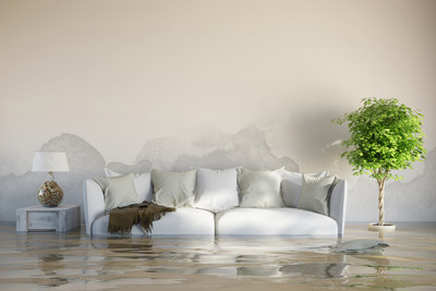 Manage your home flood with these simple steps (CNW Group/ProTech Restorations)