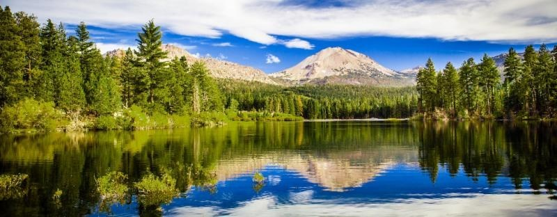 Dive into summer in Laseen Park's Manzanita Lake.